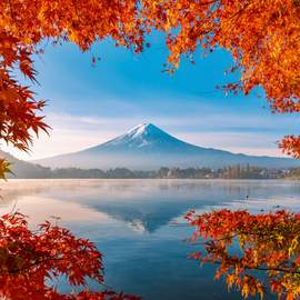 Puzzle 1000 Autumn splendor of Mount Fuji