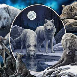Puzzle 1000 Magnificent wolves