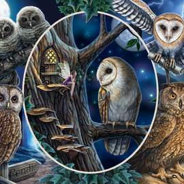 Puzzle 1000 Mysterious owls